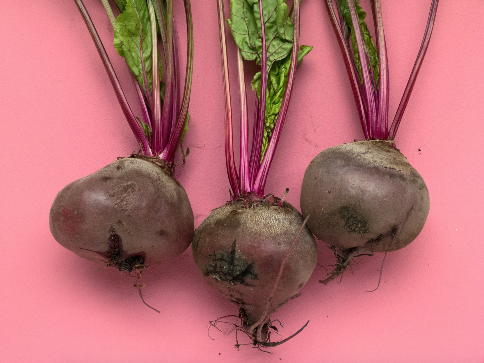 Beets – 20 Ways to Play!
